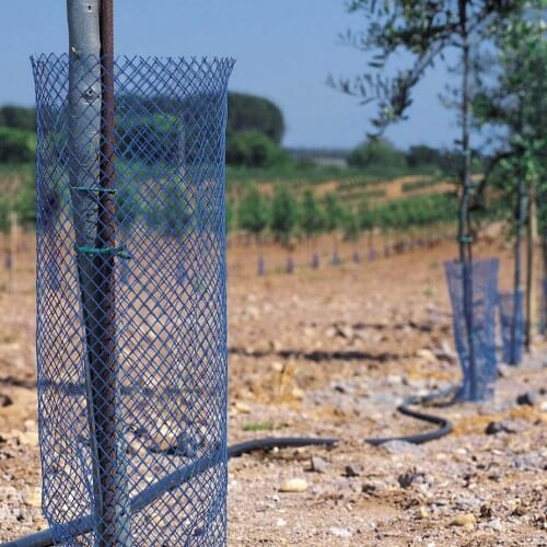 Protection rongeurs biodegradable